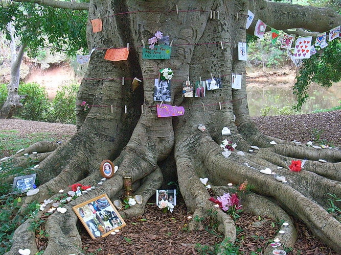DotD tree Day of the Dead Ceremony at Crystal Castle